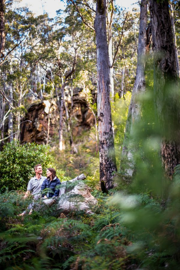 Portrait photography of a couple in the bush